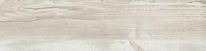 ÁBSRN H1401 ST22 Ciprusfenyő Cascina 43/2