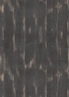 Munkalap H2031 ST10 Tölgyfa Halford fekete 4100/600/38